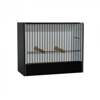 Small parakeet exhibition cage