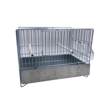 Cage Domus-Molinari 31cm...