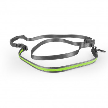Leash jogging green Nylon...