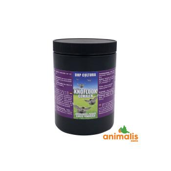 Garlic powder 500 gr