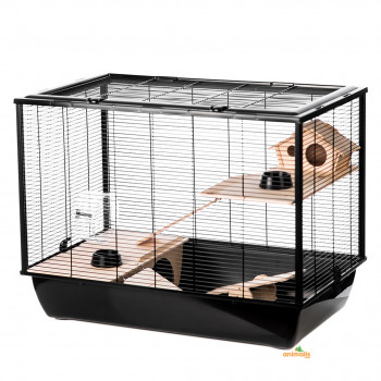 "Rodents cage ""black hammer""..."