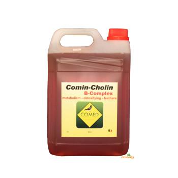 Comin-Cholin B-complex 5L