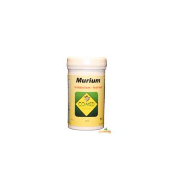 Murium bird 70gr
