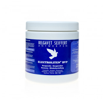 Electroliten BVP 400g