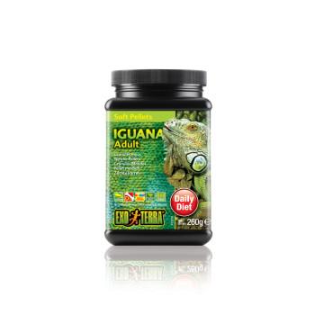 Soft granules adult iguana...