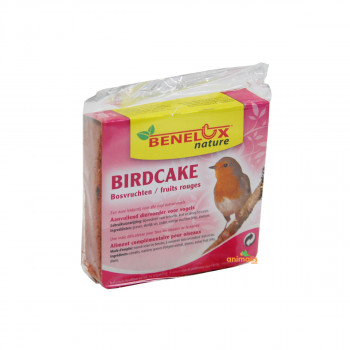Birdcake aux fruits rouges...