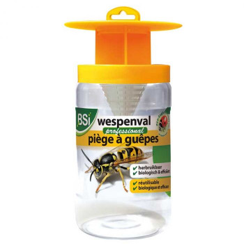 Reusable Wasp Trap - BSI