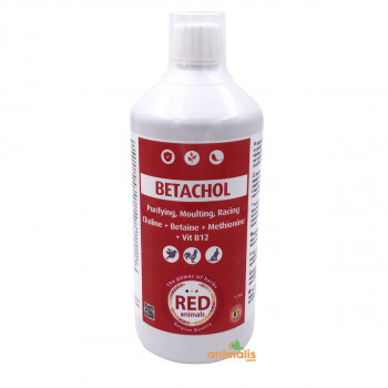 Betachol 1 litre
