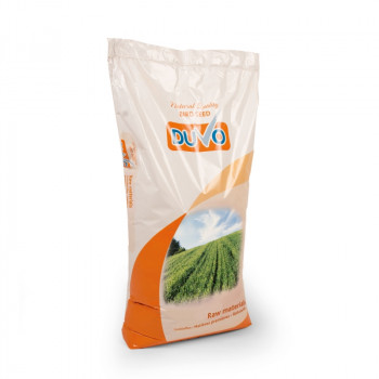 Paddy rice 20kg