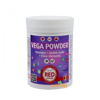 Vega Powder 100g -...